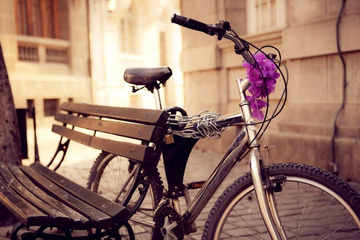 Можно ли мусульманке ездить на велосипеде
