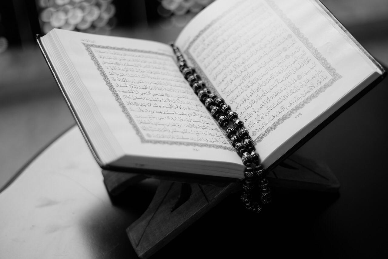 Кораниты